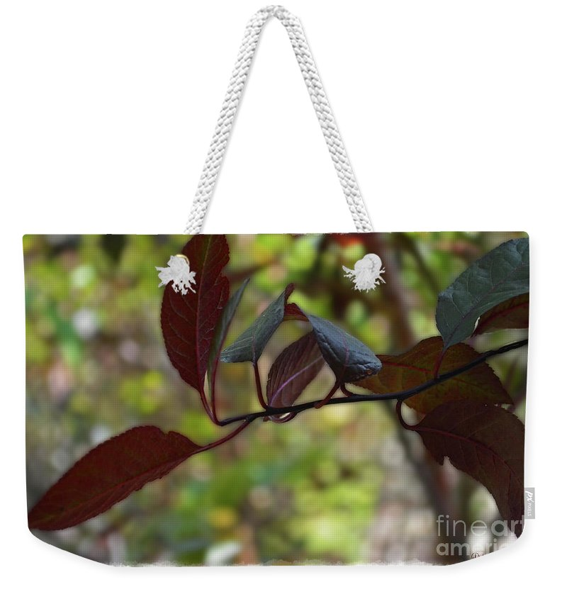 Season Weekender Tote Bag featuring the photograph Red Leaves With Frame by Debbie Portwood