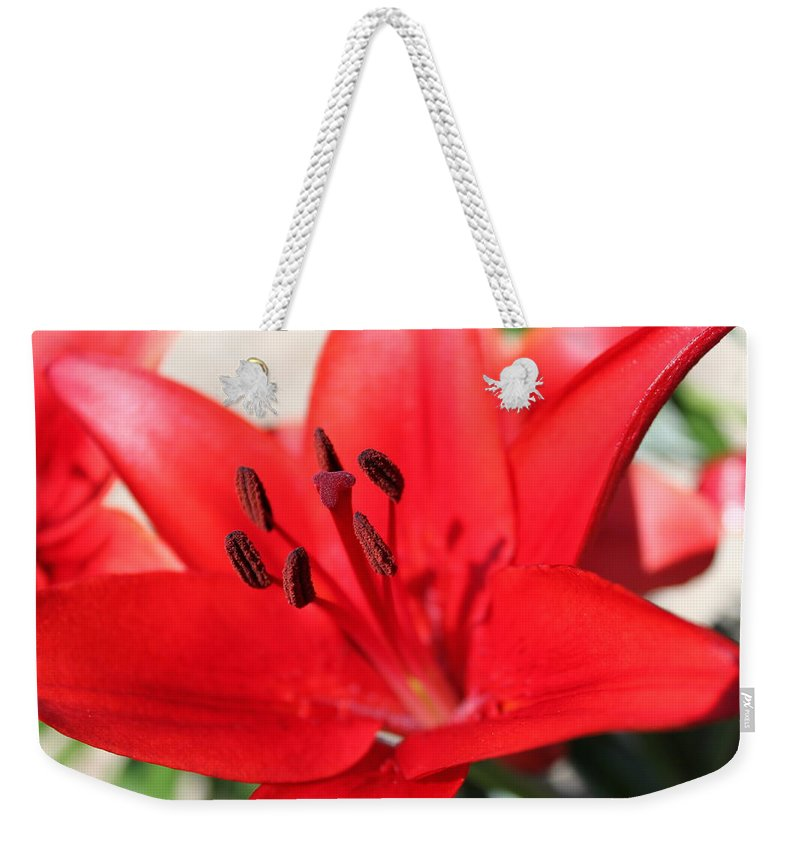 Lilly Weekender Tote Bag featuring the photograph Red Lilly by Lauri Novak