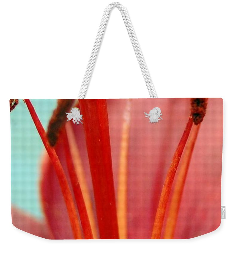 Flower Weekender Tote Bag featuring the photograph Red Lily Reach by Amy Fose