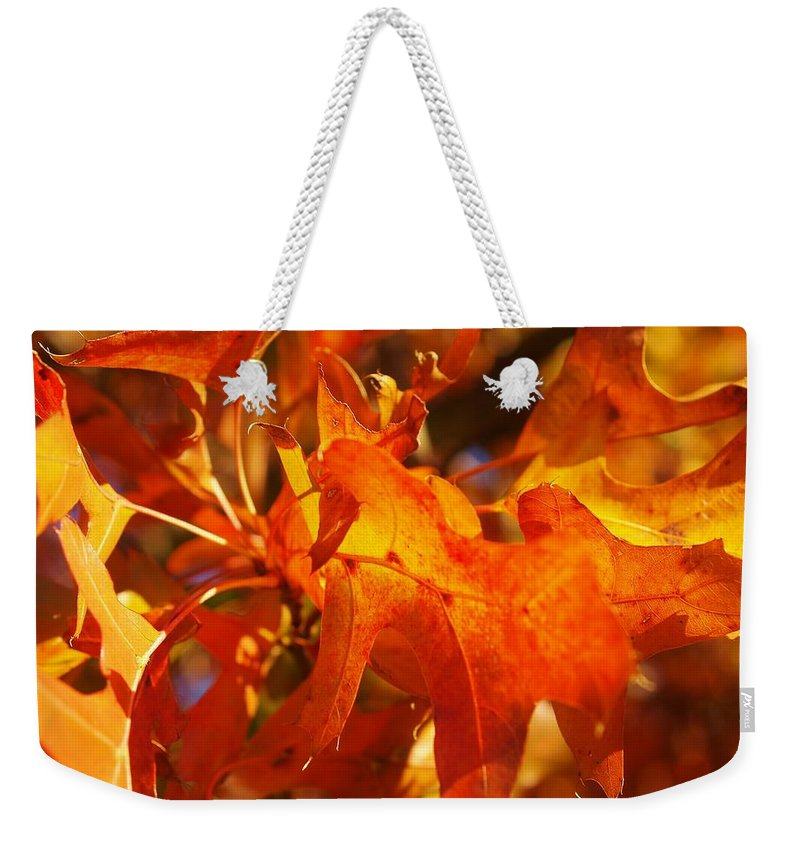 Tree Weekender Tote Bag featuring the photograph Red Oak Leaf by Denise Irving