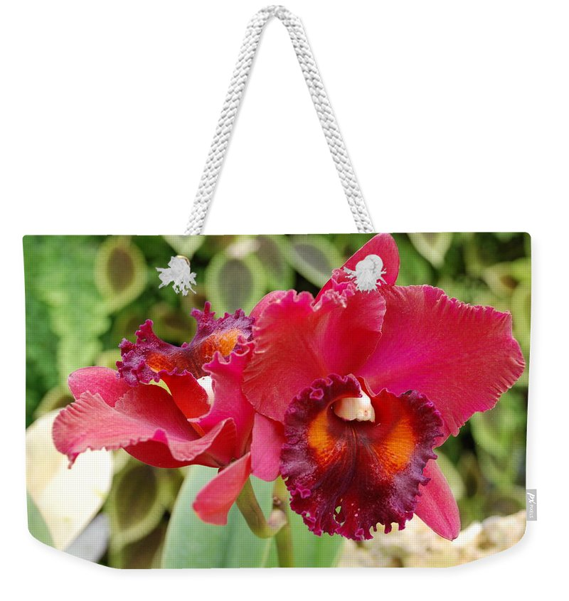 Macro Weekender Tote Bag featuring the photograph Red Orchid by Rob Hans