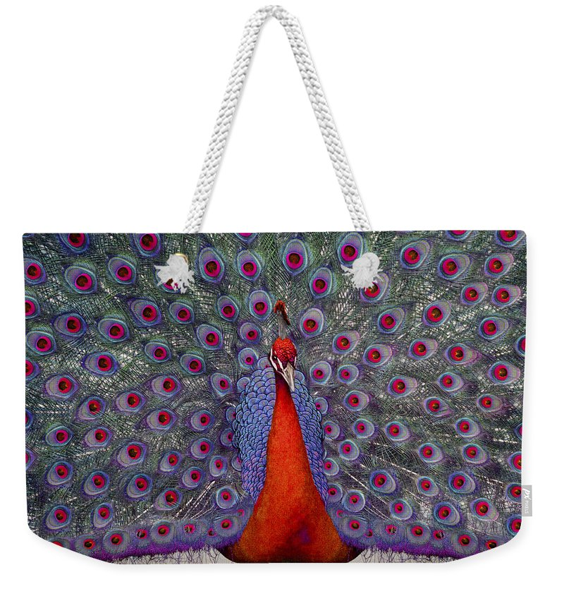 Peacock Weekender Tote Bag featuring the photograph Red Peacock by Guy Crittenden