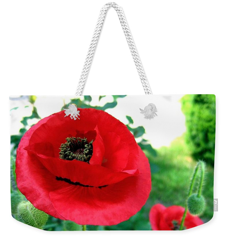 Poppies Weekender Tote Bag featuring the photograph Red Poppies by Will Borden