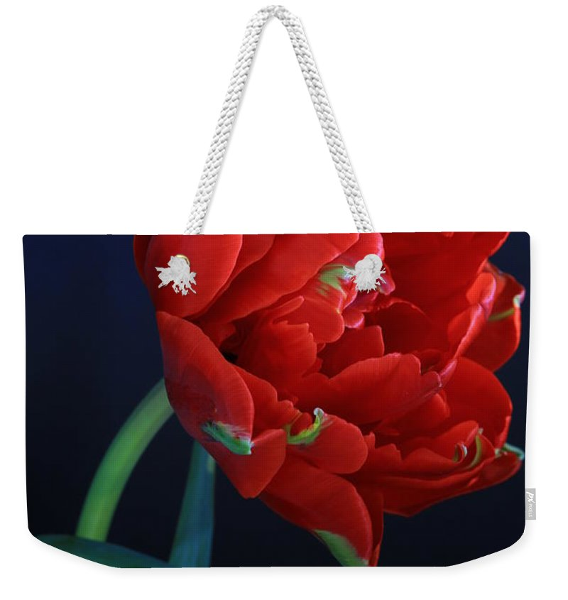 Red Princess On Blue By Rusalka Koroleva Weekender Tote Bag featuring the photograph Red Princess Tulip On Blue by Rusalka Koroleva