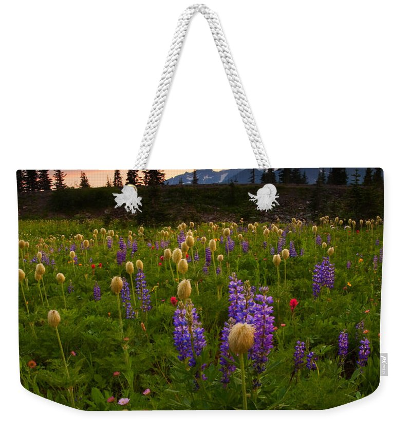 Anenome Weekender Tote Bag featuring the photograph Red Sky Meadow by Mike Dawson