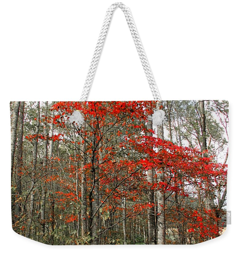 Landscape Weekender Tote Bag featuring the photograph Red Tree by Todd Blanchard