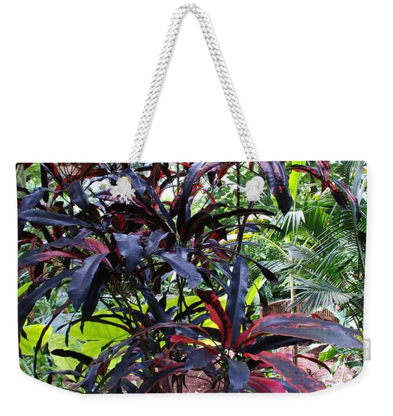 Red Weekender Tote Bag featuring the photograph Red Trees by Rob Hans