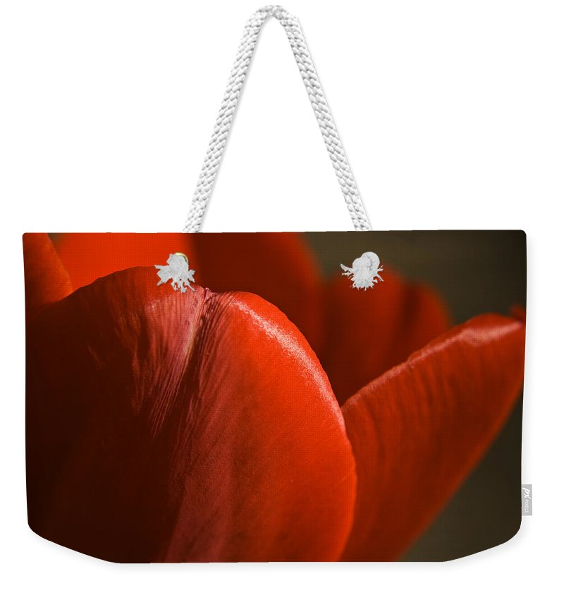 Tulip Weekender Tote Bag featuring the photograph Red Tulip Up Close by Teresa Mucha