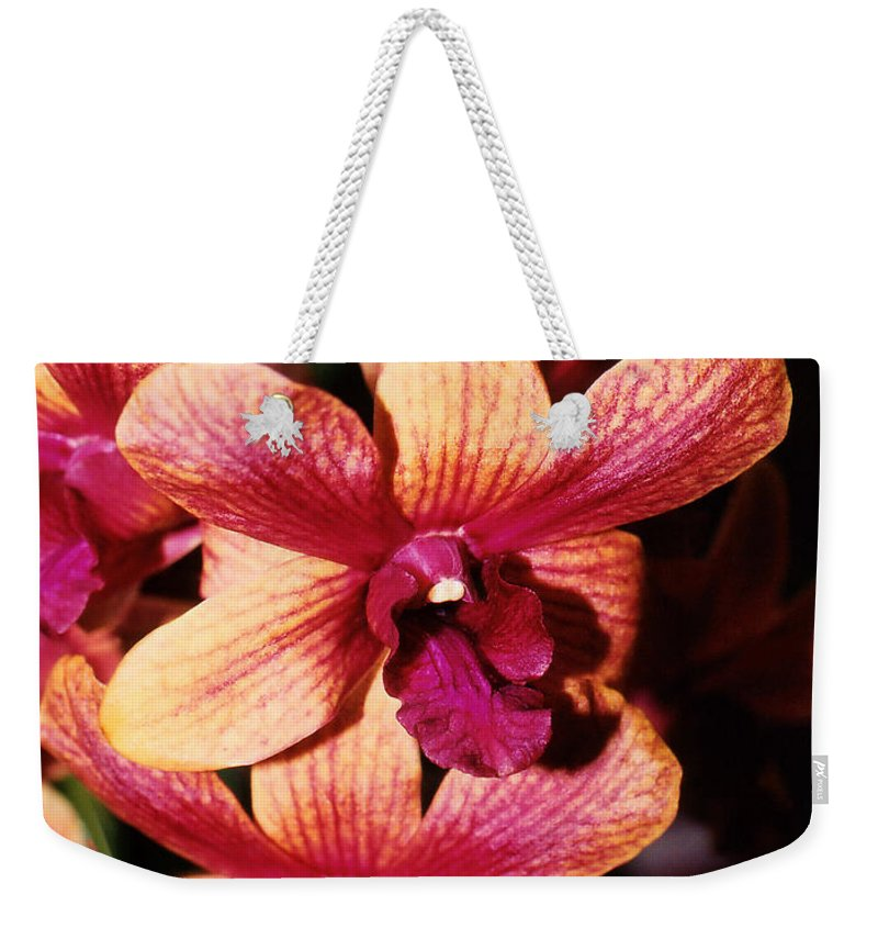 Orchid Weekender Tote Bag featuring the photograph Red Twins by Susanne Van Hulst