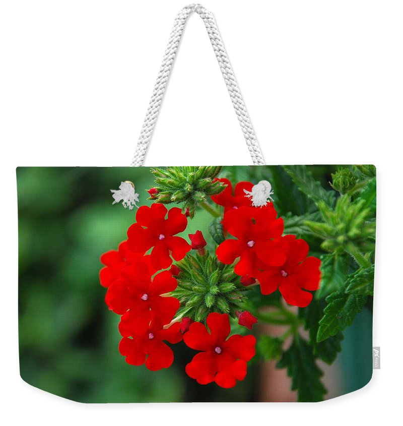 Verbana Weekender Tote Bag featuring the photograph Red Verbana by Francie Davis
