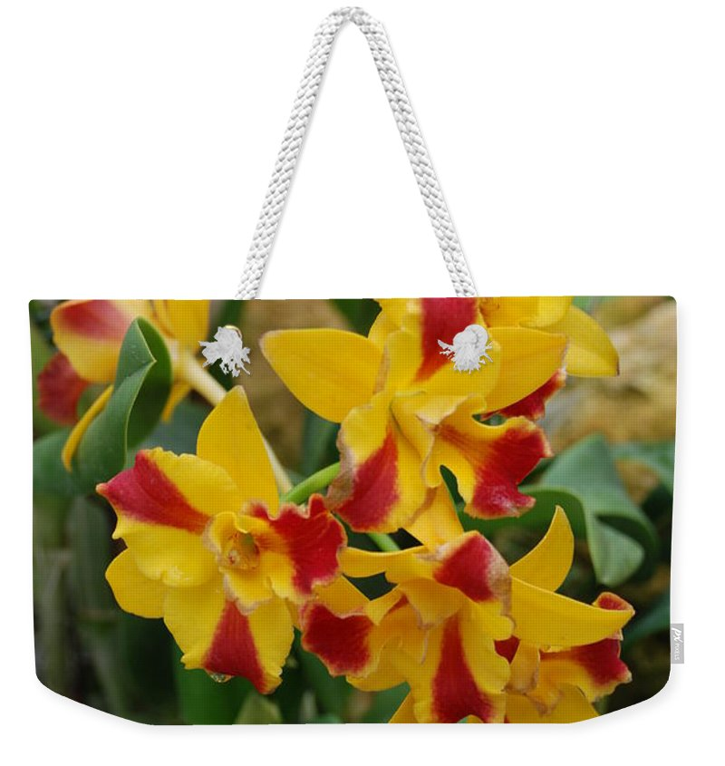 Macro Weekender Tote Bag featuring the photograph Red Yellow Orchids by Rob Hans
