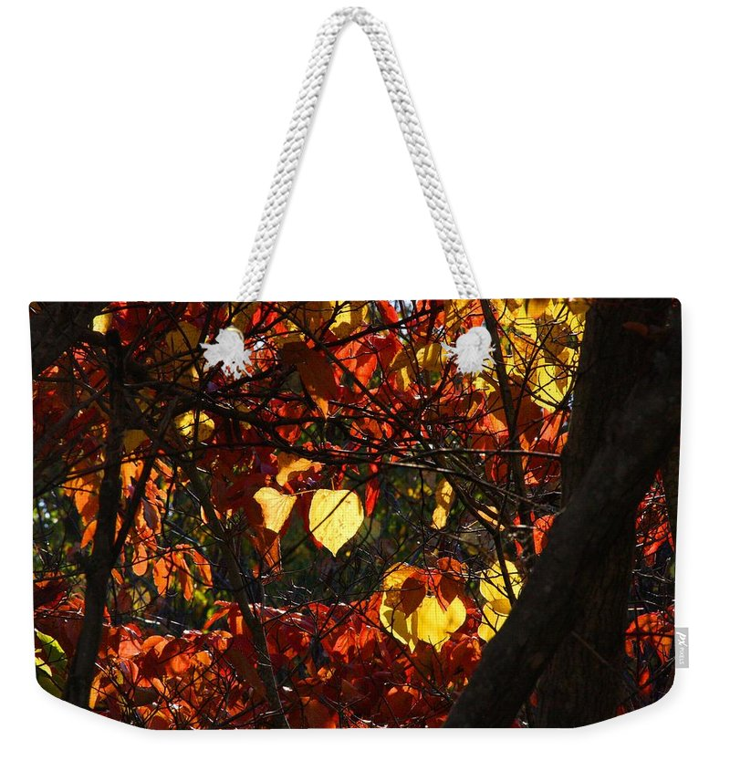 Redbud Weekender Tote Bag featuring the photograph Redbud by Kathryn Meyer