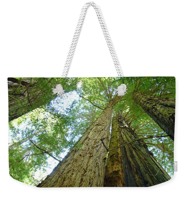 Redwood Weekender Tote Bag featuring the photograph Redwood Trees Green Branches Sky art prints by Patti Baslee