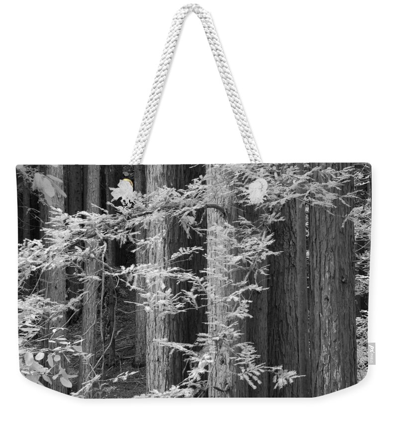 Tallest Weekender Tote Bag featuring the photograph Redwoods Ir 0625 by Bob Neiman