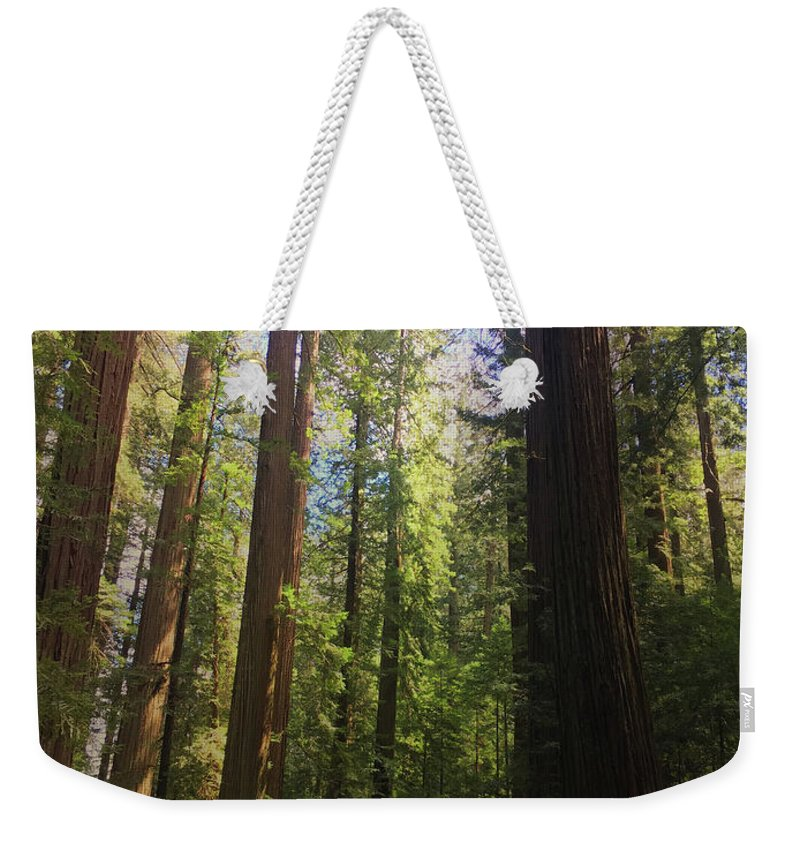 Redwood Weekender Tote Bag featuring the photograph Redwoods by Melissa Wester