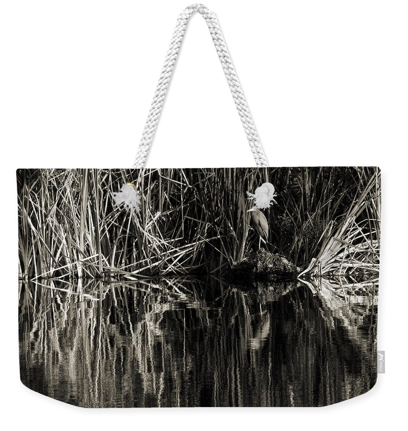 Little Blue Heron Weekender Tote Bag featuring the photograph Reeds And Heron by Steven Sparks