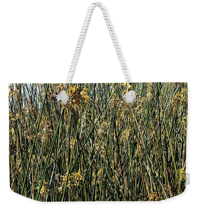 Reeds Weekender Tote Bag featuring the photograph Reeds II by Gary Richards