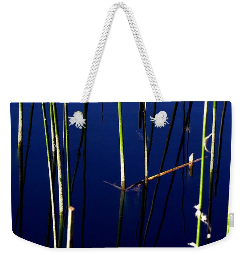 Water Reeds Weekender Tote Bag featuring the photograph Reeds Of Reflection by Chris Brannen