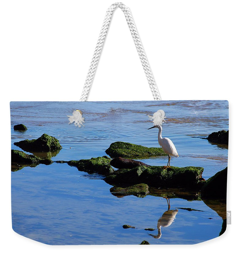 Clay Weekender Tote Bag featuring the photograph Reflecting On Dinner by Clayton Bruster