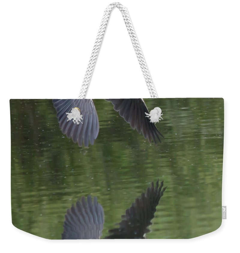 Bird Weekender Tote Bag featuring the photograph Reflecting On Flight by Shane Bechler