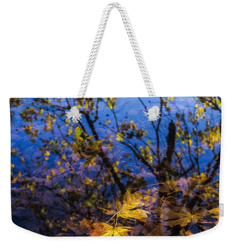 Autumn Weekender Tote Bag featuring the photograph Reflection And Transparency by Robert Potts
