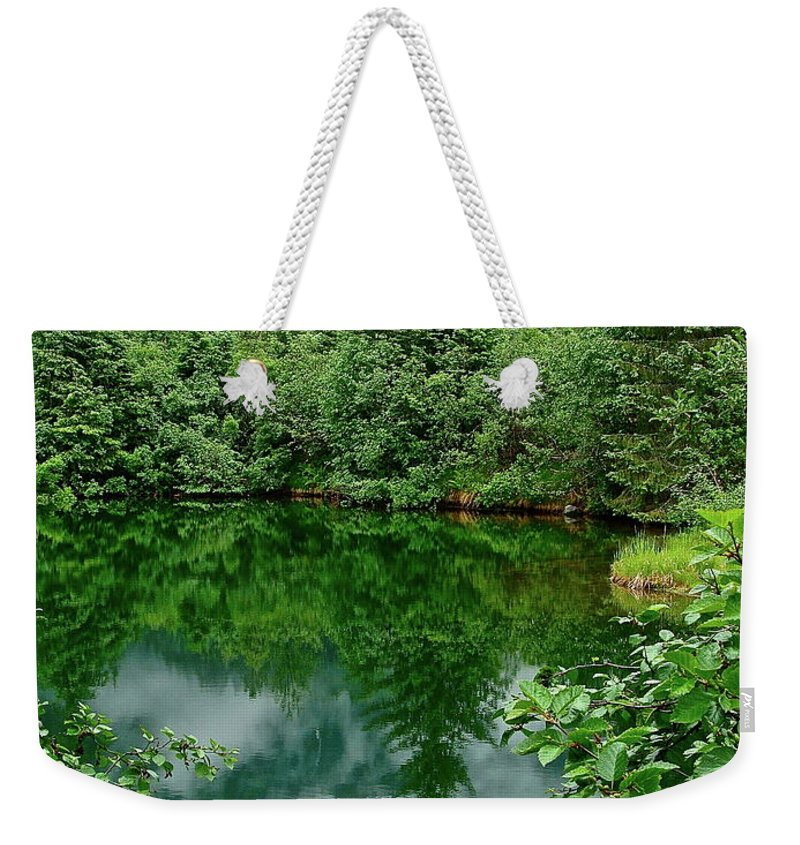 Trees Weekender Tote Bag featuring the photograph Reflection by Diana Hatcher