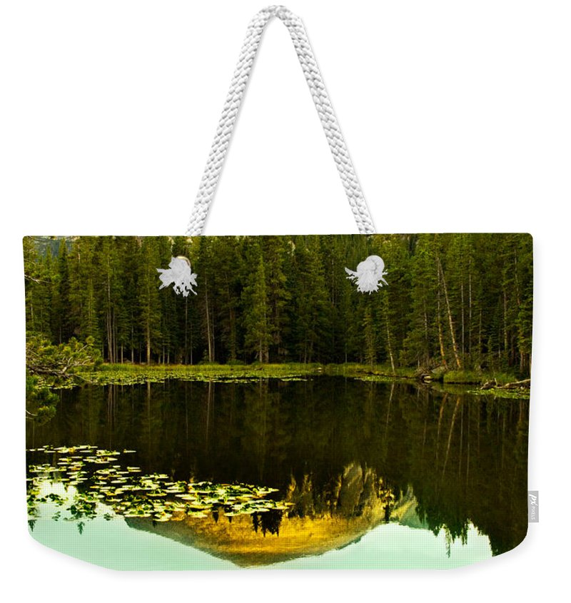Reflection Weekender Tote Bag featuring the photograph Reflection by Marilyn Hunt