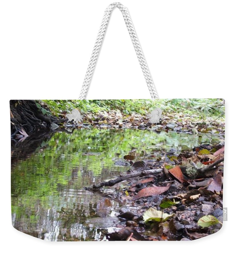 Woods Weekender Tote Bag featuring the photograph Reflection by Shari Chavira