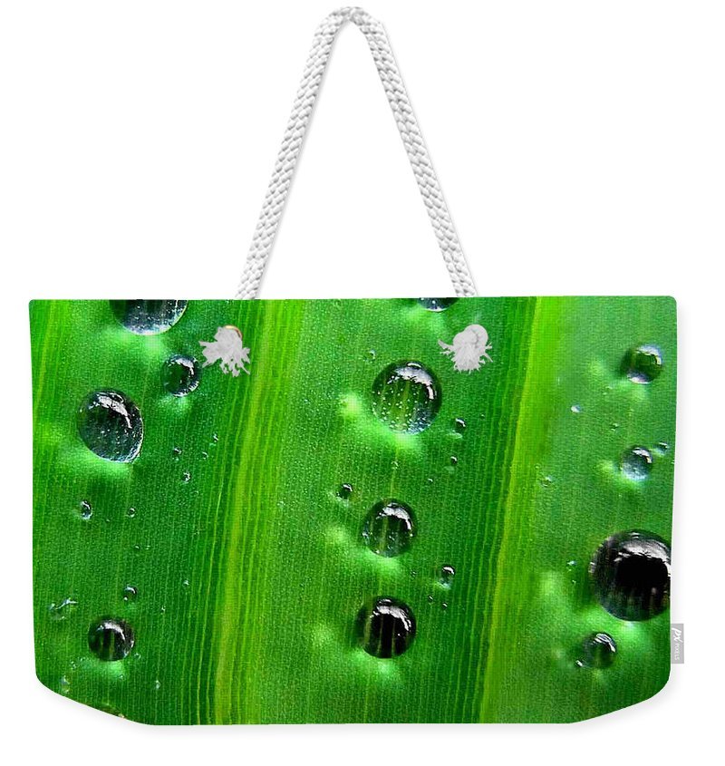 Drops Weekender Tote Bag featuring the photograph Reflections Drops by Dragica Micki Fortuna