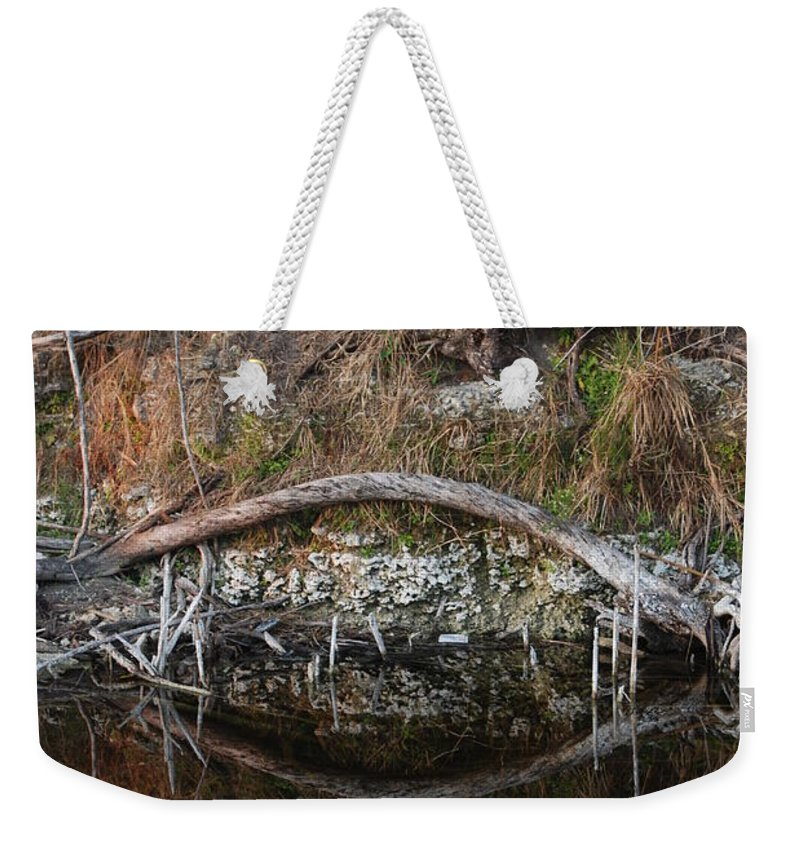 Iguana Weekender Tote Bag featuring the photograph Reflections Iguana by Rob Hans