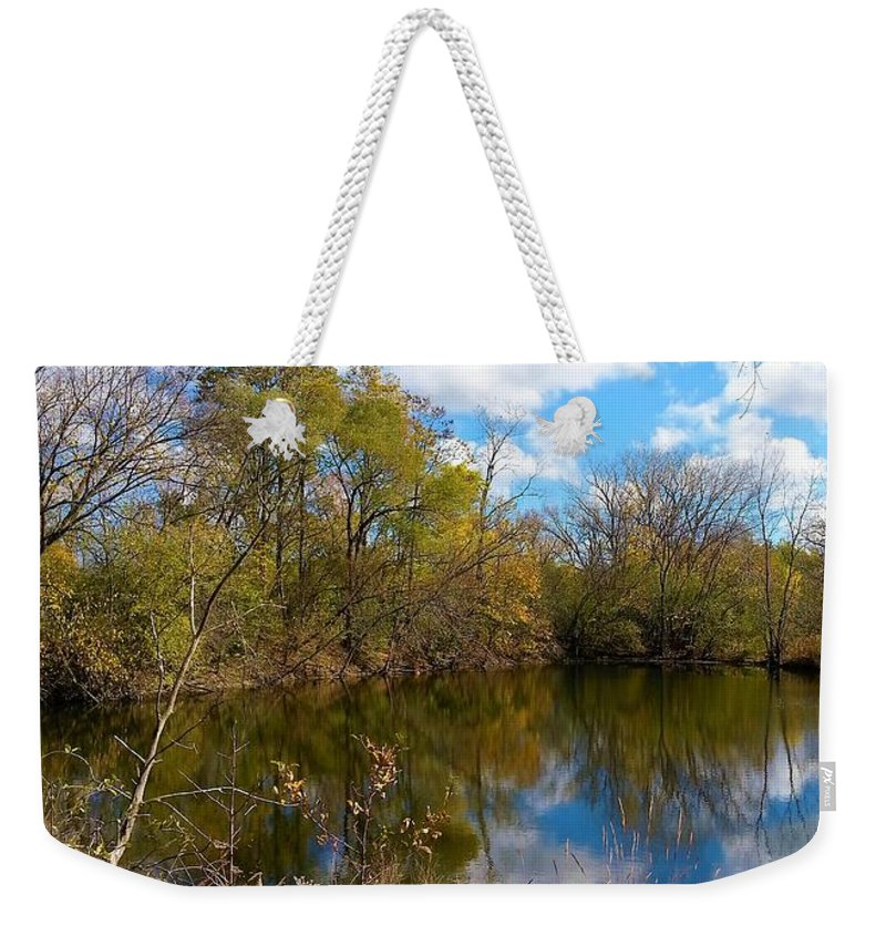 Colored Grasses Weekender Tote Bag featuring the photograph Reflective Cloudy Palatine, Il, Library Pond by Jane Butera Borgardt