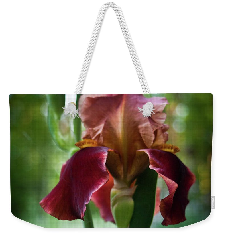 Regal Weekender Tote Bag featuring the photograph Regal Iris by Douglas Barnett