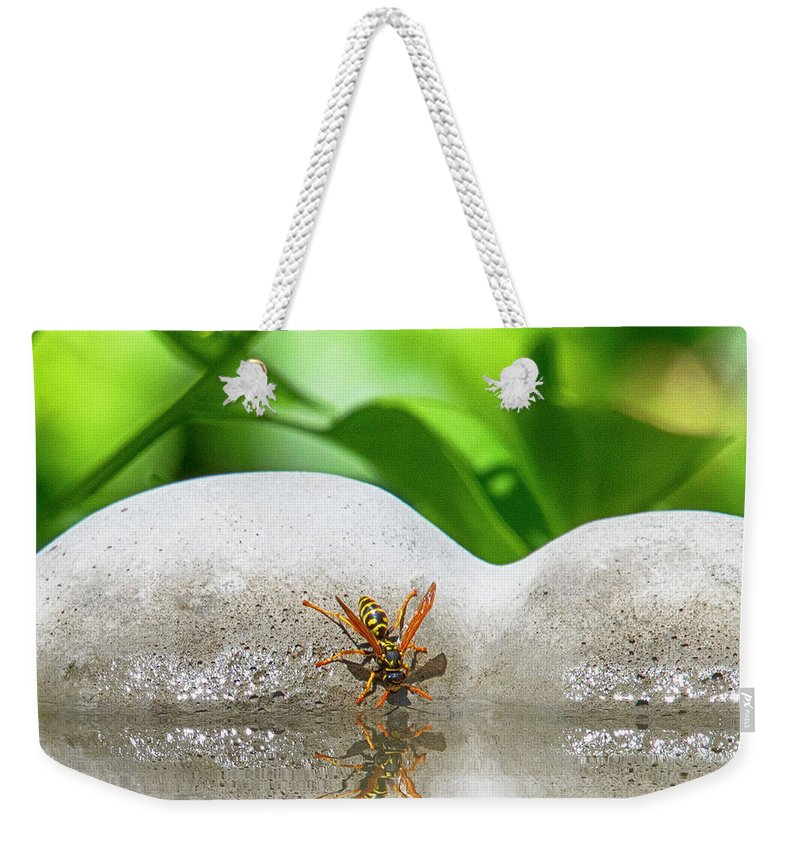 Yellow Jacket Weekender Tote Bag featuring the photograph Reflected Little Stinger Taking A Sip 2 By Chris White by C H Apperson