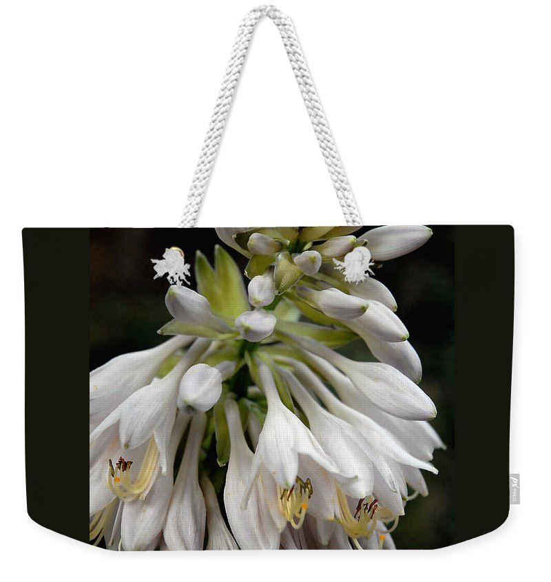 Hosta Weekender Tote Bag featuring the photograph Renaissance Lily by Marie Hicks