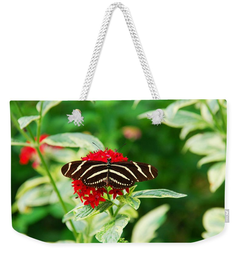 Butterfly Weekender Tote Bag featuring the photograph Resting by Susanne Van Hulst