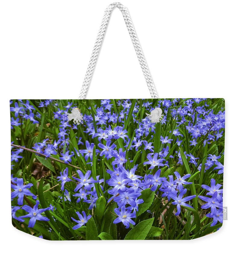 Flowers Weekender Tote Bag featuring the photograph Return To The Meadow by Scott Ballingall
