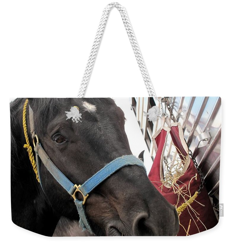 Horse Weekender Tote Bag featuring the photograph Reward For A Job Well Done by Ian MacDonald