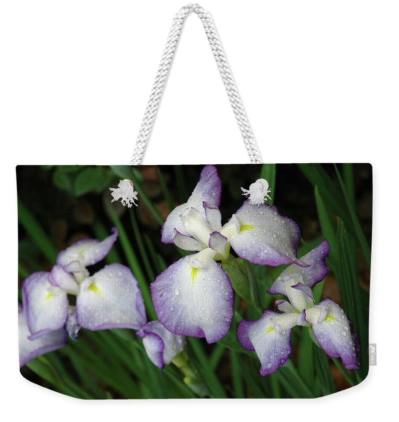 Iris Weekender Tote Bag featuring the photograph Rhapsody by Marie Hicks