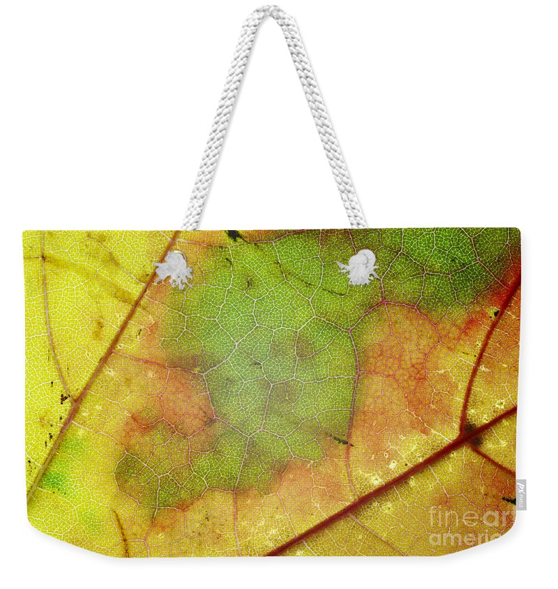 Leaf Weekender Tote Bag featuring the photograph Ribbing by Michal Boubin