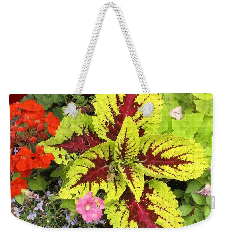 Flowers Weekender Tote Bag featuring the photograph Rich Pattern by Ian MacDonald