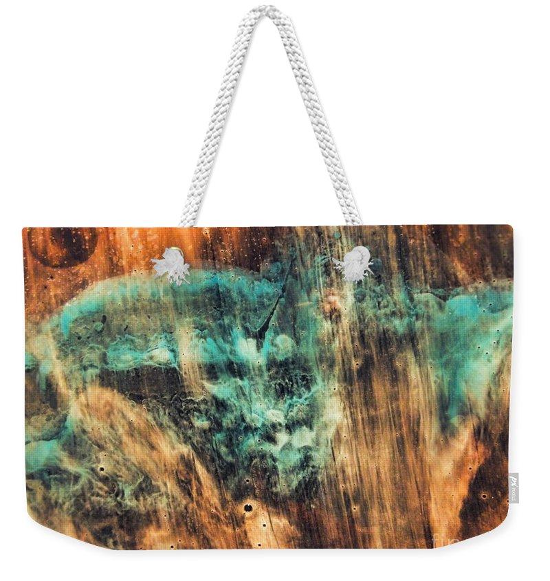 Riddick Weekender Tote Bag featuring the painting Riddicks World Watercolor Painting by Justyna JBJart