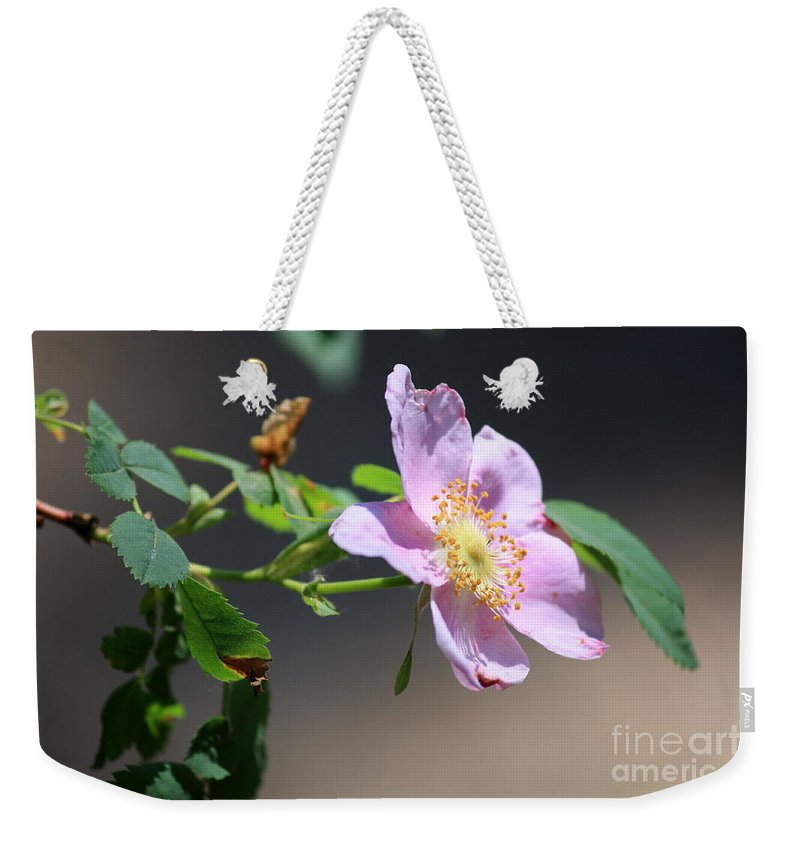 Floral Weekender Tote Bag featuring the photograph Rimrock Rose by Carol Groenen