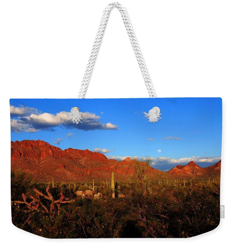 Rising Moon Weekender Tote Bag featuring the photograph Rising Moon In Arizona by Susanne Van Hulst