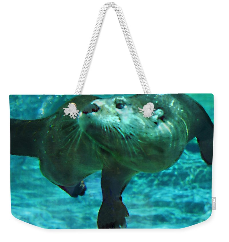 Animal Weekender Tote Bag featuring the photograph River Otter by Steve Karol