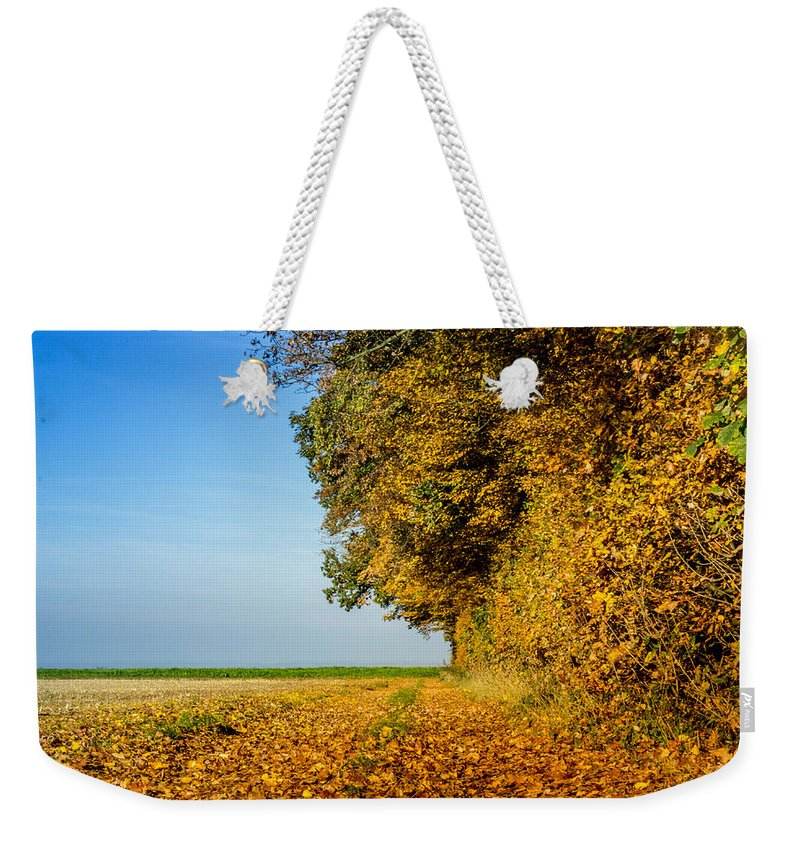Landscape Weekender Tote Bag featuring the photograph Road Of Leaves by Dr Charles Ott