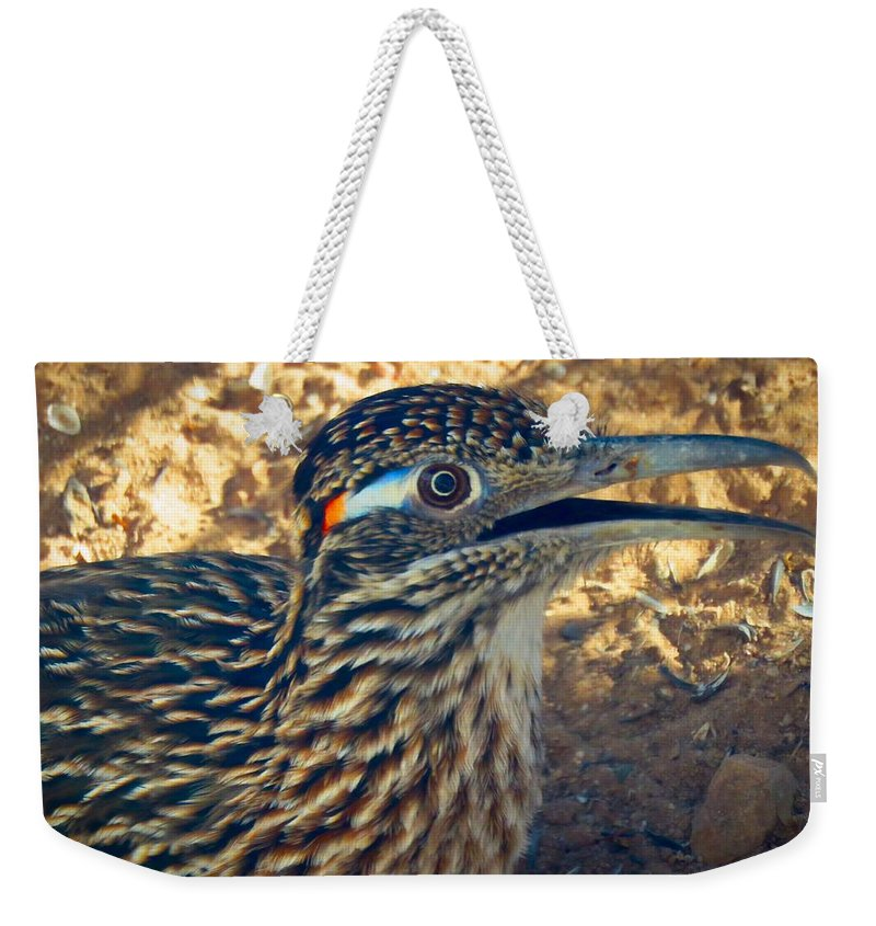 Arizona Weekender Tote Bag featuring the photograph Roadrunner Portrait by Judy Kennedy