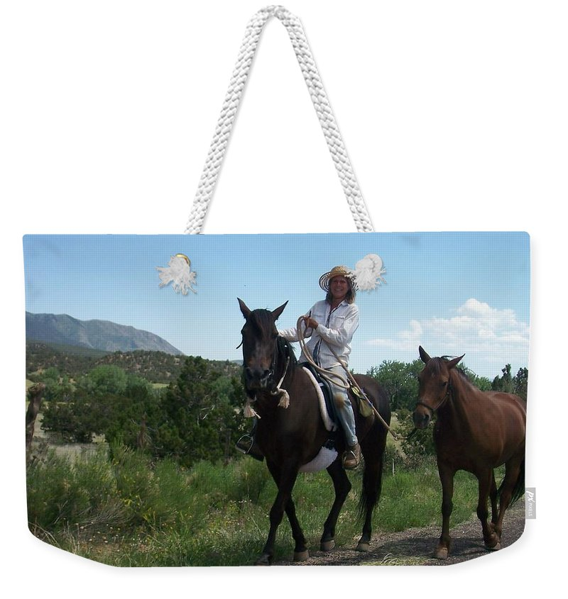 Horses Weekender Tote Bag featuring the photograph Roadside Horses by Anita Burgermeister
