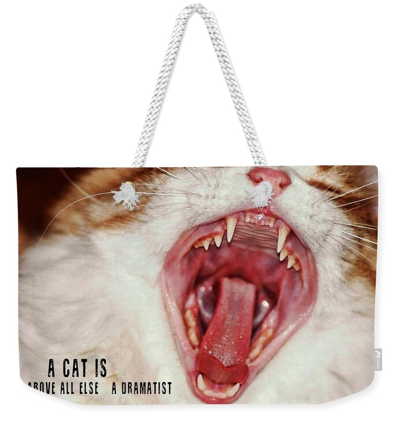 Cat Weekender Tote Bag featuring the photograph Roar Quote by JAMART Photography