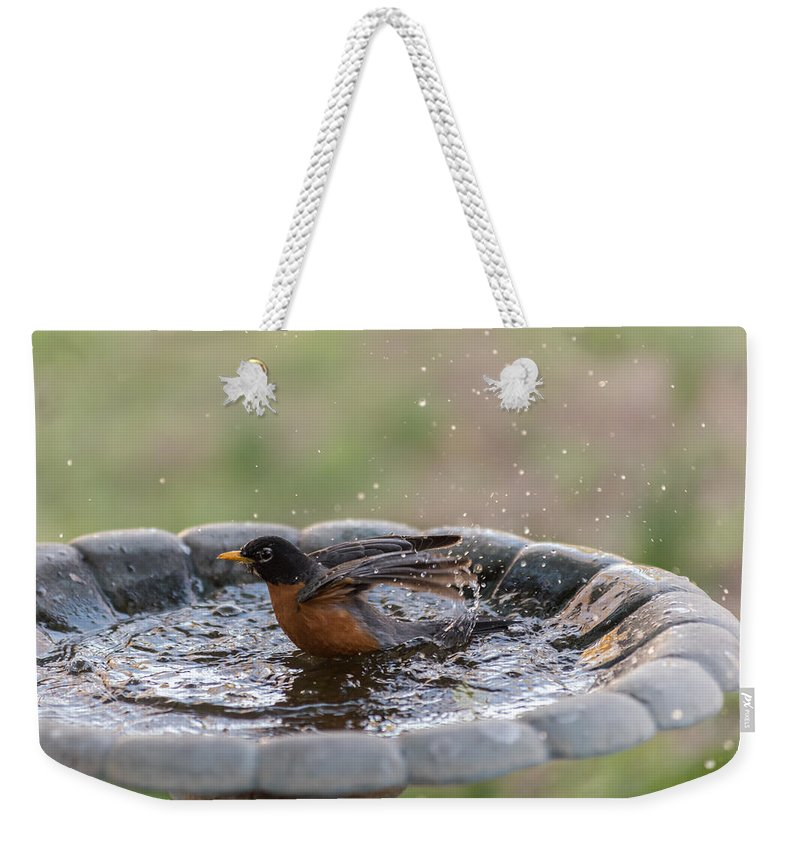Terry Deluco Weekender Tote Bag featuring the photograph Robin In Bird Bath New Jersey by Terry DeLuco