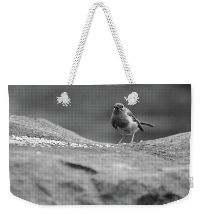 Bird Weekender Tote Bag featuring the photograph Robin In Black And White by Frances Lewis